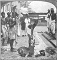 Goat sacrifice - Page-22 - Chapter IV - History of India Vol 1 (1906).png