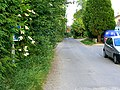 Goatacre Lane, Goatacre - geograph.org.uk - 840313.jpg