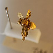 An insect coated in gold, having been prepared for viewing with a scanning electron microscope.
