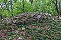 Golyamo Gradishte Peak, Strandzha 003.jpg