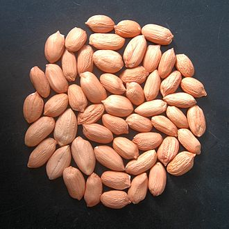 Directorate of Groundnut Research - Groundnut kernel