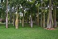 Grup de corísies al jardí del Túria de València.JPG