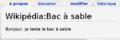 Guide de Wikipédia - 3.FP5.04 bac à sable remplacé.png