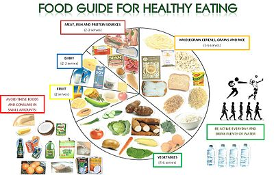 Health Canada Daily Food Intake Recommendations