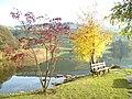 Hüttensee - panoramio.jpg
