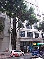 HK CWB 銅鑼灣 Causeway Bay 銅鑼灣道 Tung Lo Wan Road St Paul Hospital tree August 2018 SSG.jpg