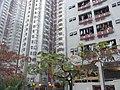 HK Hung Hom 家維邨 Ka Wai Chuen central park view residential building facades Jan-2013.JPG