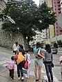 HK Sai Ying Pun 皇后大道西 Queen's Road West stone wall banyan trees visitors 廣豐里 Kwong Fung Lane April 2013.JPG