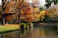 Hagley Park New Zealand. (8069588653).jpg