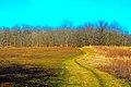Hanover Township, IL, USA - panoramio (5).jpg