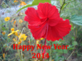 Happy New Year 2014.png