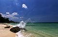 Havelock Island by Vikramjit Kakati.jpg
