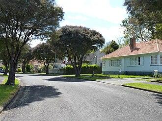Hamilton East, New Zealand - Hayes Paddock, Hamilton East.