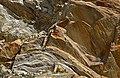 Heart of stone (9981804995).jpg