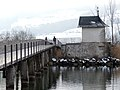 Heilighüsli - Holzbrücke - Rapperswil HSR 2013-01-21 11-39-52 (P7700).JPG