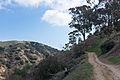 Hellman Park Whittier CA 5 Mariposa Trail.jpg