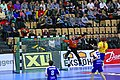 Helsingborg 2013-01-08 (8452862978).jpg