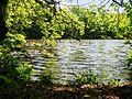 Hesede skov - panoramio.jpg