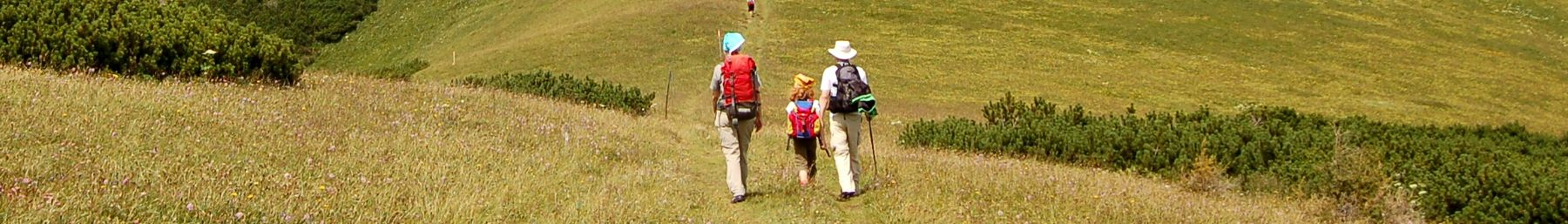 Hiking page banner.jpg