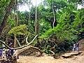 Hohoe, Ghana - panoramio.jpg