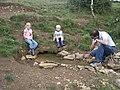 Holy Well, nr Chippenham - geograph.org.uk - 1419861.jpg