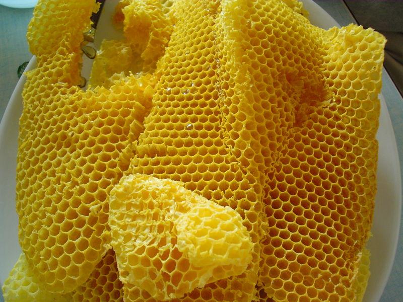 http://upload.wikimedia.org/wikipedia/commons/thumb/c/ca/Honeycombs-rayons-de-miel-1.jpg/800px-Honeycombs-rayons-de-miel-1.jpg