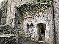 Hore Abbey, Caiseal, Éire - 44767877560.jpg