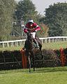Horses racing (2882441644).jpg