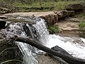 Horton Creek Trail, Payson, Arizona - panoramio (50).jpg