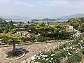 Hosojima Island and Kobosojima Island from observation deck in Innoshima Flower Center 4.jpg