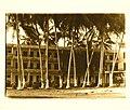 Hotel Playa hermosa, San Blas Nayarit, Mexico.jpg