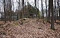 Huegelgrab-Fischbach-Taunus-JR-E-4974-2021-04-17.jpg