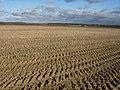 Huge field - geograph.org.uk - 1055868.jpg
