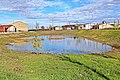 Humedal Charco Lozano en El Campo de Peñaranda.jpg