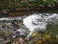 Hydraulic jump on Naramatagawa River's stream.JPG