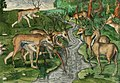 Illustration from Grand Voyages by Theodor de Bry, digitally enhanced by rawpixel-com 18.jpg