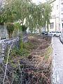 Imaculado Coração de Maria, Funchal - 24 Jan 2012 - SDC15031.JPG