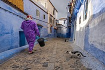 Inhabitants of the blue city 3.jpg