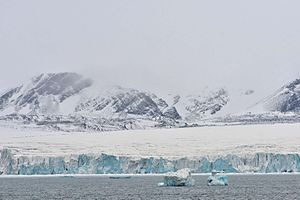 Severny Island - Inostrantsev Glacier terminus. West coast.