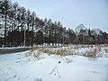 Irkutsk. Akademgorodok. February 2013 - panoramio (124).jpg