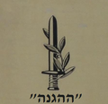 Israel Batch 1 (174) cropped.png