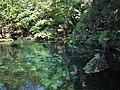 Izuruhara Benten Pond 2.jpg