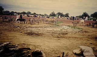Kollo, Niger Commune and town in Tillabéri, Niger