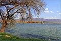 Jazero - panoramio (1).jpg
