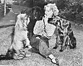 Jeanette MacDonald with her three pet dogs.jpg