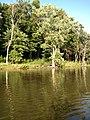 July 2016 Crooked Creek adventure - panoramio - Ron Shawley (39).jpg