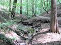 Kötzschenbroda Oberort Dreizehn-Brücken-Weg a.jpg