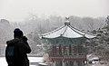 KOCIS Korea National Museum Snowfall 04 (11580580383).jpg