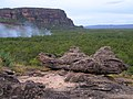 Kakadu 2004 - panoramio.jpg