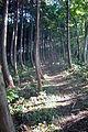 Kannabe highlands Toyooka Hyogo pref Japan02bs8.jpg
